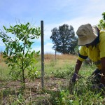 larrakia environmental services