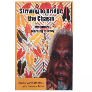 Striving to Bridge the Chasm