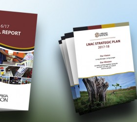 Annual Report and Strategic Plan